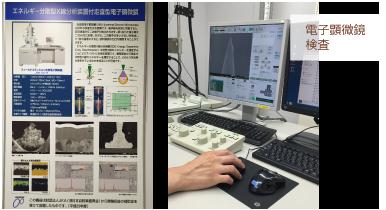 ディスポ鍼電子顕微鏡検査